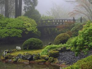Fog, Portland Japanese Garden, Portland, USA, Oregon by Michel Hersen
