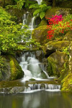 Heavenly Falls, Portland Japanese Garden, Oregon, Usa by Michel Hersen