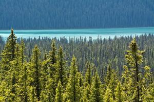Hector Lake, Banff National Park, Alberta, Canada by Michel Hersen