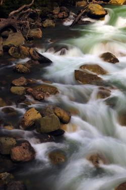 Hooksack River, Mount Baker-Snoqualmie National Forest, Washington, USA by Michel Hersen
