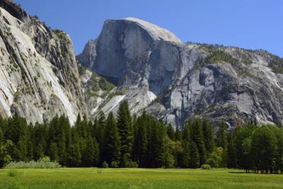 Meadow below Half Dome in Yosemite National Park, California, USA