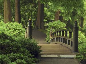 Moon Bridge after the Rain: Portland Japanese Garden, Portland, Oregon, USA by Michel Hersen