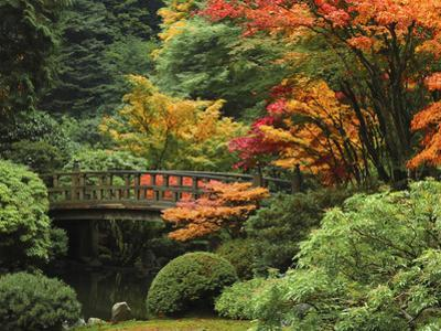 Moon Bridge in Autumn: Portland Japanese Garden, Portland, Oregon, USA by Michel Hersen