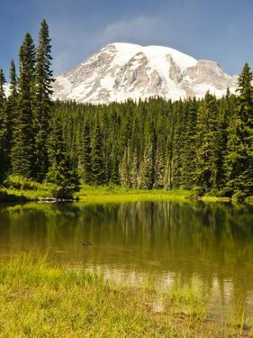Mount Rainier, Reflection Lakes, Mount Rainier National Park, Washington State, USA by Michel Hersen
