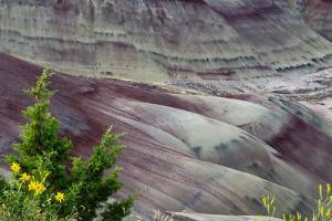 Painted Hills, John Day Fossil Beds National Monument, Mitchell, Oregon, USA by Michel Hersen