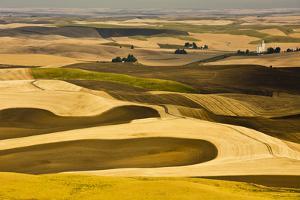Palouse Fields, from Steptoe Butte, Steptoe Butte Sp, Washington by Michel Hersen
