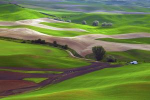 Palouse, Steptoe Butte, Agriculture Patterns, Whitman County, Washington, USA by Michel Hersen