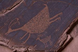 Petroglyph, Monument Valley Navajo Tribal Park, Arizona by Michel Hersen