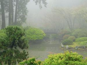 Portland Japanese Garden Fogged In: Portland, Oregon United States of America, USA by Michel Hersen