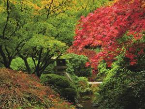 Portland Japanese Garden in Autumn, Portland, Oregon, USA by Michel Hersen