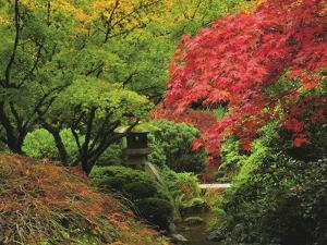 Portland Japanese Garden in Autumn, Portland, Oregon, USA by Michel Hersen
