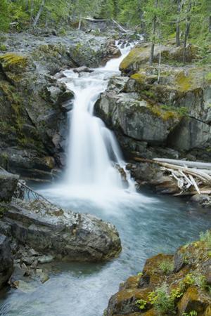 Silver Falls, Mount Rainier National Park, Washington, Usa