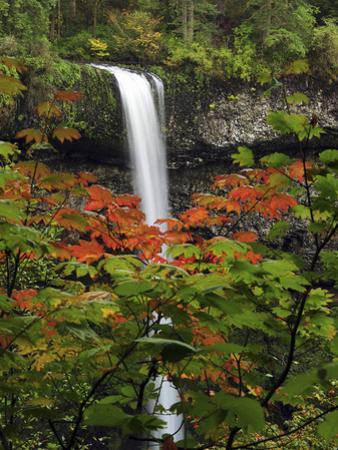 South Falls in Autumn, Silver Falls State Park, Oregon, USA