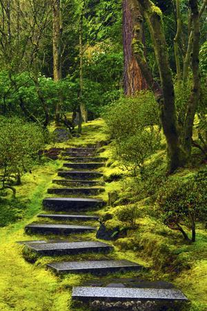 Spring on the Steps, Portland Japanese Garden, Portland, Oregon, USA