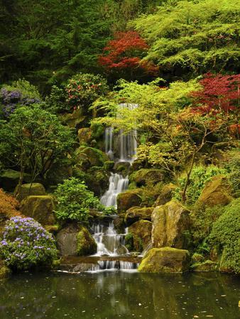 Spring, Portland Japanese Garden, Portland, Oregon, USA