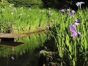 Summer in the Portland Japanese Garden, Portland, Oregon, USA by Michel Hersen