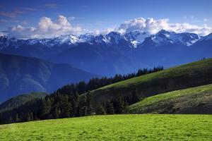 View from Hurricane Ridge, Olympic National Park, Washington, USA by Michel Hersen