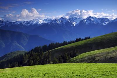 View from Hurricane Ridge, Olympic National Park, Washington, USA