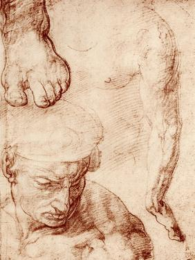 Studies for the Figure of the Cross-Bearer in the Last Judgement, Sistine Chapel, Rome, 1913 by Michelangelo Buonarroti