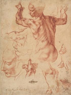 Studies for the Libyan Sibyl (recto), c.1510-11 by Michelangelo Buonarroti