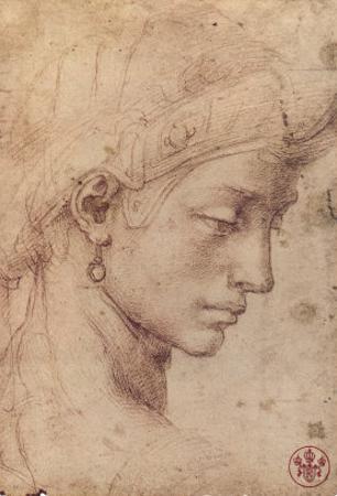 Testa Femminile di Profilo by Michelangelo Buonarroti
