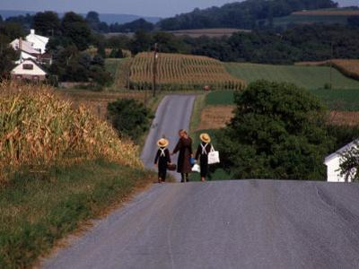 Amish Children, Lancaster County, PA by Michele Burgess