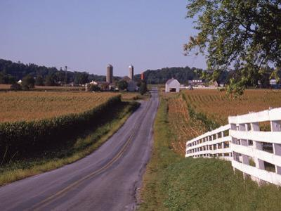 Country Road, Lancaster County, PA by Michele Burgess