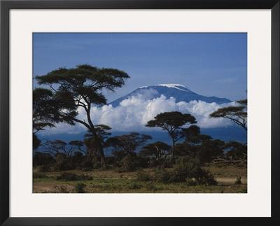 Kenya, Mount Kilimanjaro by Michele Burgess