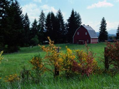 Red Barn in Meadow, Castle Rock, Washington by Michele Burgess