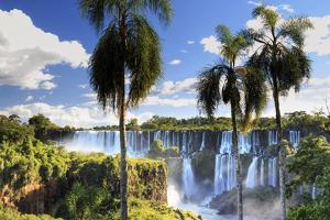 Argentina, Iguazu Falls National Park, (Unesco Site) by Michele Falzone