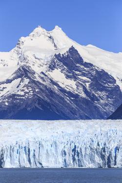 Argentina, Patagonia, El Chalten, Los Glaciares National Park by Michele Falzone