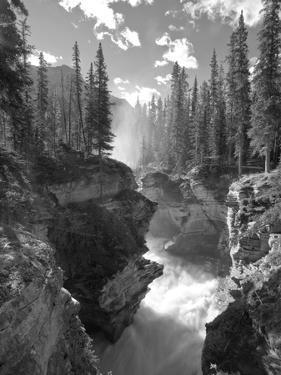 Athabasca Falls Waterfall, Jasper National Park, Alberta, Canada by Michele Falzone
