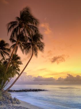 Caribbean, Barbados, Mullins Beach by Michele Falzone