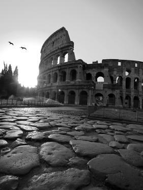 anal-sex-black-and-white-picture-of-coliseum