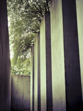 Germany, Berlin, Jewish Museum, Holocaust Memorial by Michele Falzone