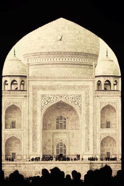 India, Uttar Pradesh, Agra, Taj Mahal (UNESCO site) by Michele Falzone