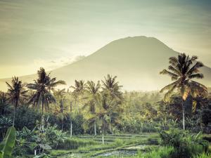 Indonesia, Bali, East Bali, Amlapura, Rice Fields and Gunung Agung Volcano by Michele Falzone