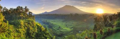 Indonesia, Bali, Redang, View of Rice Terraces and Gunung Agung Volcano by Michele Falzone