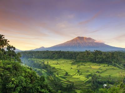 Indonesia, Bali, Redang, View of Rice Terraces and Gunung Agung Volcano