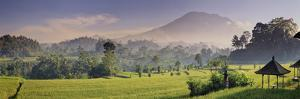Indonesia, Bali, Sidemen, Iseh, Rice Fields and Gunung Agung Volcano by Michele Falzone
