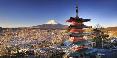 Japan, Yamanashi Prefecture, Fuji-Yoshida, Chureito Pagoda and Mt Fuji During Cherry Blossom Season by Michele Falzone