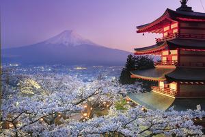 Japan, Yamanashi Prefecture, Fuji-Yoshida, Chureito Pagoda, Mt Fuji and Cherry Blossoms by Michele Falzone