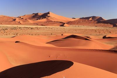 Namibia, Namib Naukluft National Park, Sossussvlei Sand Dunes by Michele Falzone