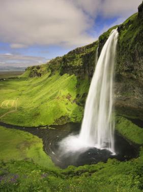 Seljalandfoss Waterfall, South Coast, Iceland by Michele Falzone