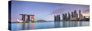 Singapore, Marina and City Skyline by Michele Falzone
