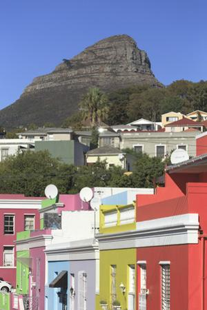 South Africa, Western Cape, Cape Town, Bo-kaap by Michele Falzone