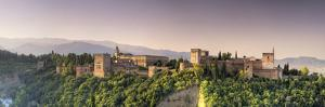 Spain, Andalucia, Granada, Alhambra Palace Complex (UNESCO Site) by Michele Falzone