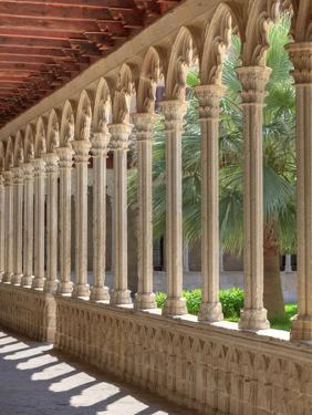 Spain, Balearic Islands, Mallorca, Palma De Mallorca, Basilica De Sant Francesc, Cloister by Michele Falzone