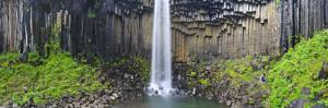 Svartifoss Waterfall, Skaftafell Park, Iceland by Michele Falzone