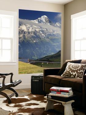 Switzerland, Bernese Oberland, Grindelwald, First by Michele Falzone